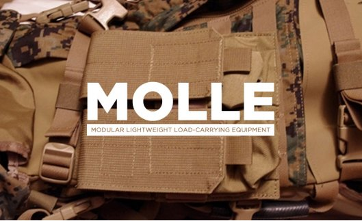 MOLLE you've heard of it, maybe used it well now it's time to find out what it is!