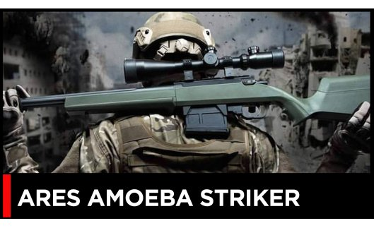An Overview of the Ares Amoeba Striker